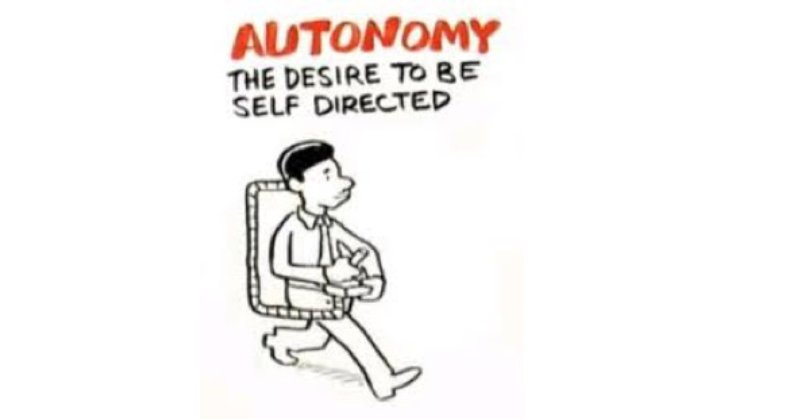 Freedom/Autonomy: How to articulate autonomy and an increase in quality level?